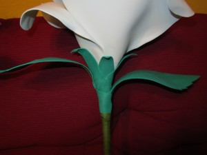 2013-06-08 goma eva, rosas gigantes (21)