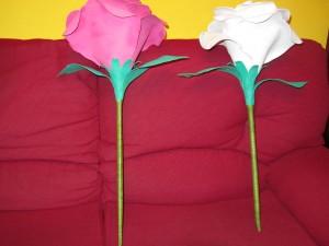 2013-06-08 goma eva, rosas gigantes (23)